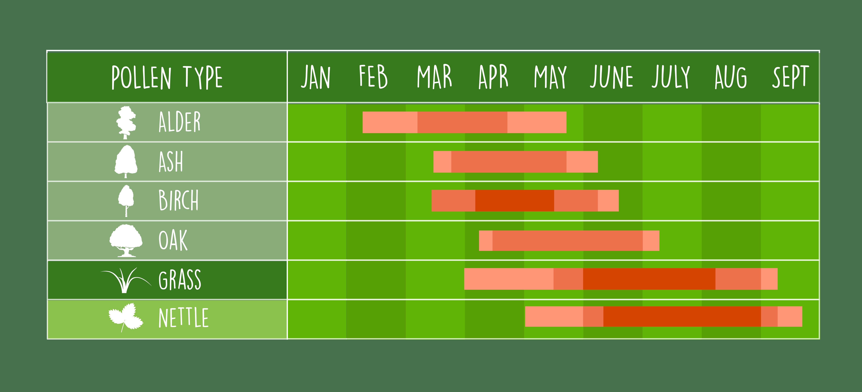 UK pollen calendar illustration, showing common pollen types in Scotland