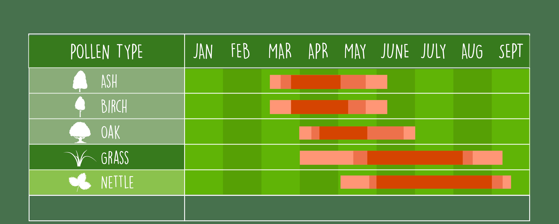 UK pollen calendar illustration, showing common pollen types in Wales